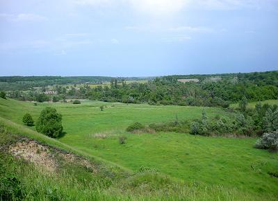 Пойма реки Локня (вид с Монастырского холма).
